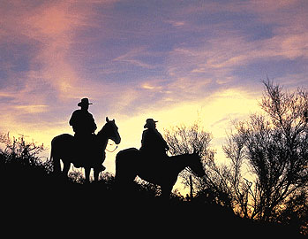 The Arizona Cowboy College offers you a chance to become a real ranch-working cowboy at a working cattle ranch.