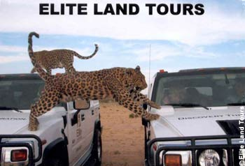 Elite Land Tours