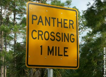 Panther Crossing Road Sign