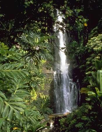 Wailua falls near hana