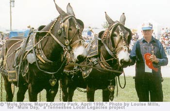 Mule Show, Maury County Park, April 1996